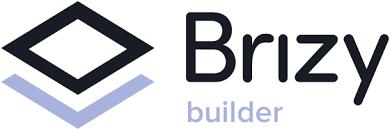 Risultato immagini per brizy logo