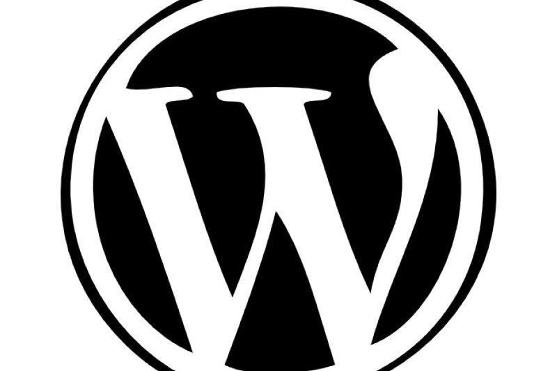 cos'è-wordpress cms